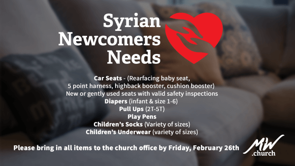 syrian-newcomer-needs-screen